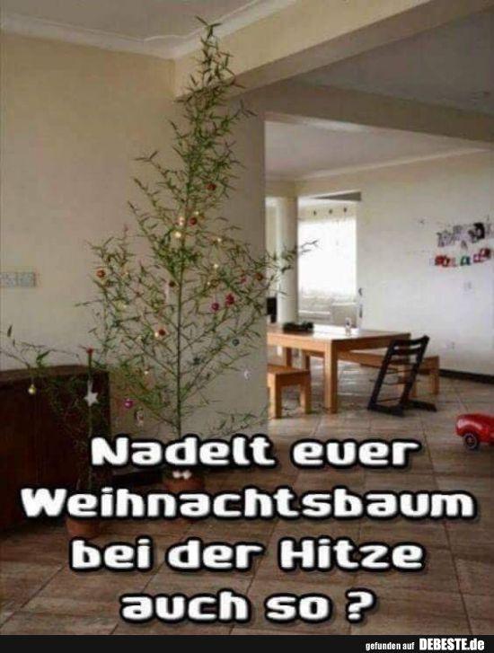 nadelt euer weihnachtsbaum bei der hitze auch so. Black Bedroom Furniture Sets. Home Design Ideas