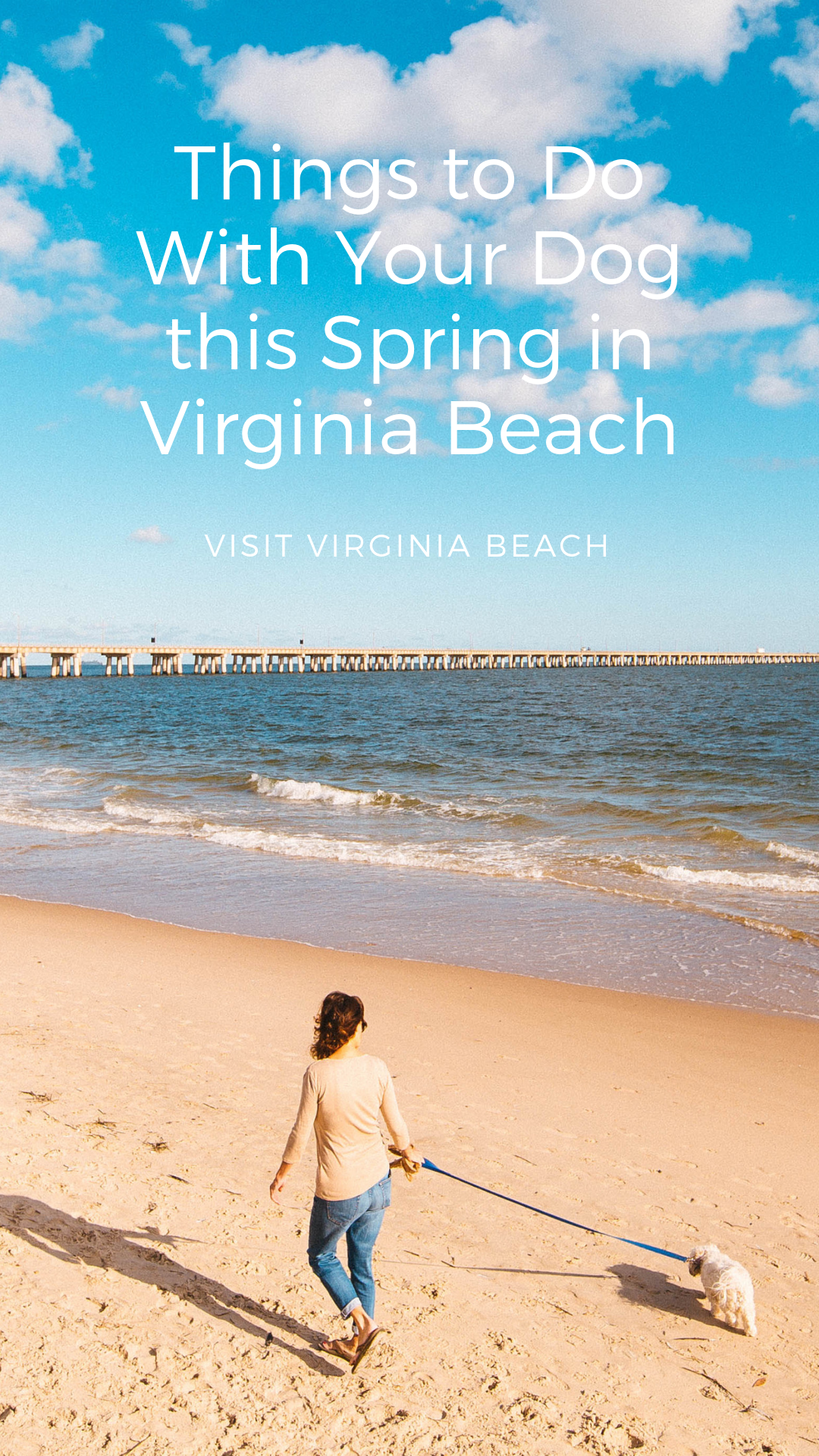 Things to Do With Your Dog this Spring in Va Beach Dog