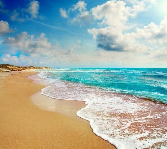 The Beach Beach Wall Art Beach Wall Decals Tropical Paradise Beach