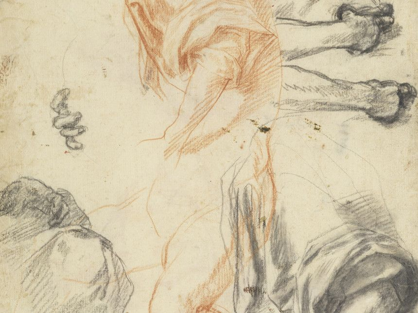 Andrea del sarto 1486 1530 studies of arms legs hands and drapery detail ca 1522 red and black
