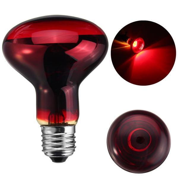 25w 40w 50w 60w 75w 100w R80 Red Infrared Basking Heat Reptile Bulb Light Ac220 240v 25w 100w Infrared Red 60w 50w 75w Light Light Bulb Bulb Reptiles