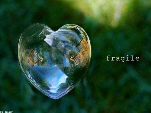 Only a Fragile Heart can know Great Love. #daretobefragile