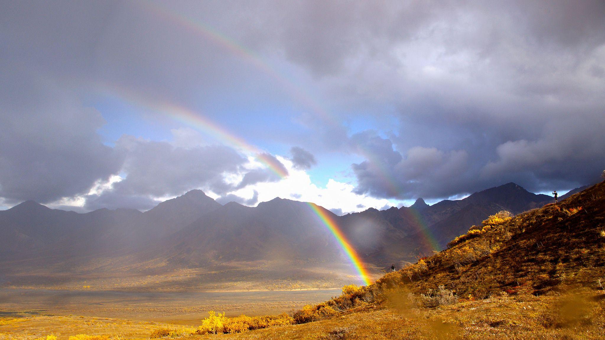 Resultado de imagem para 12 types of rainbows