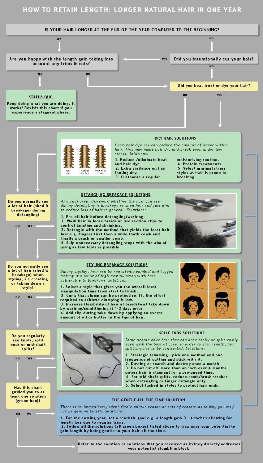 How to retain length longer natural hair in a year flow chart how to retain length longer natural hair in a year nvjuhfo Images