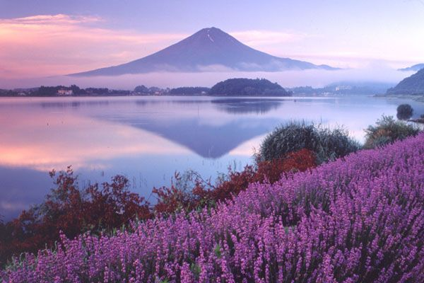 Japan, countryside with Mt Fuji in the background
