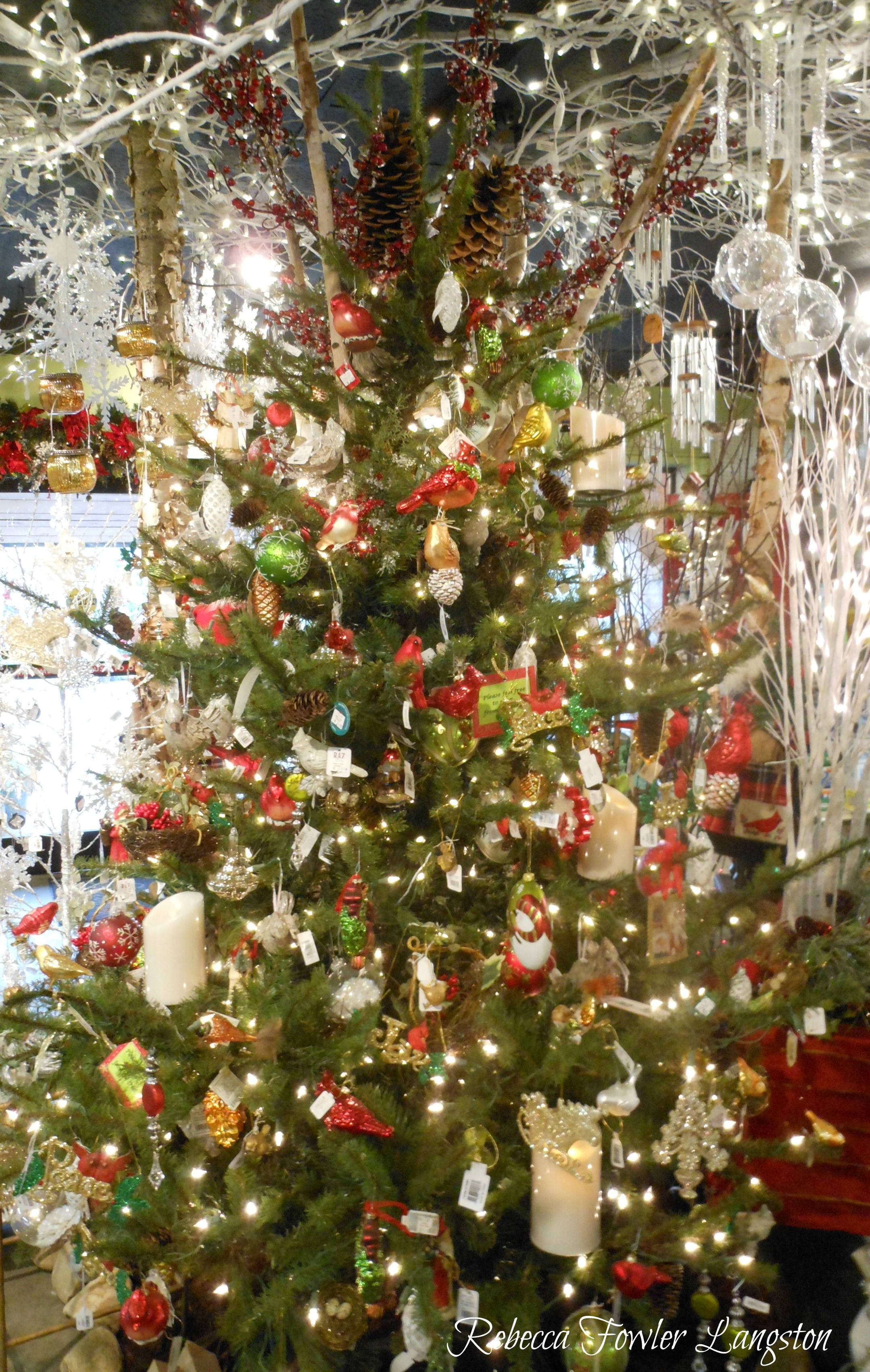 Red, White, And Green Christmas Tree At Family Tree Nursery,