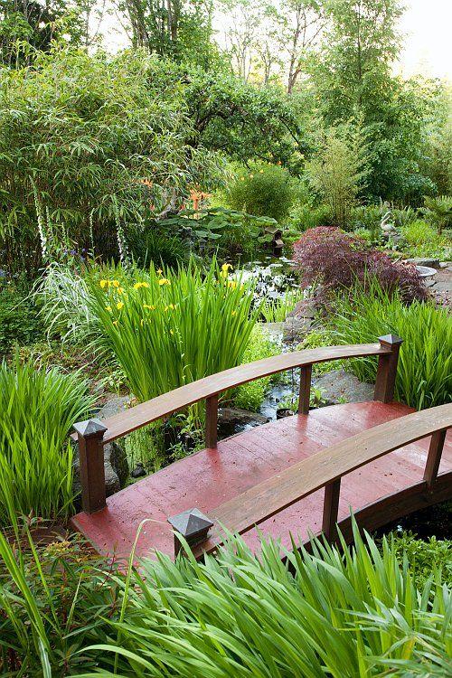 Reclaimed woodland area, with pond looking east to sunken bamboo - chinesischer garten brucke