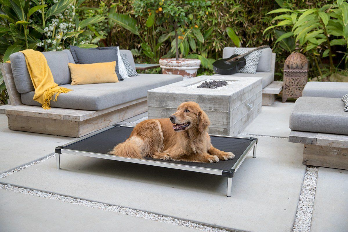 Chew Proof Armored Elevated Dog Bed™ Dog cots, Tough dog