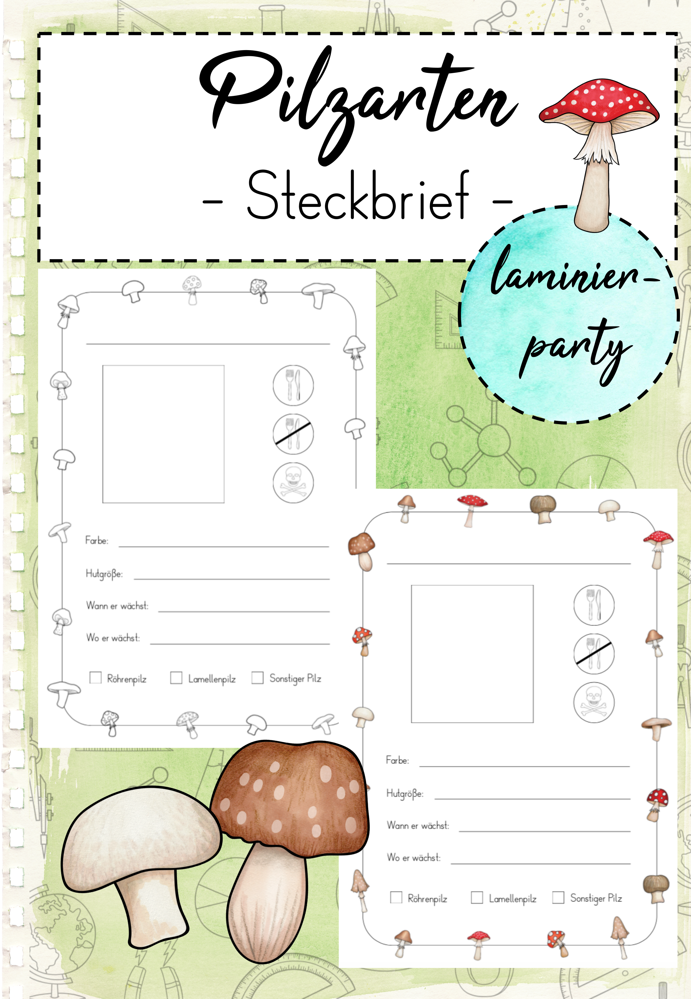 Steckbrief Pilze Grundschule