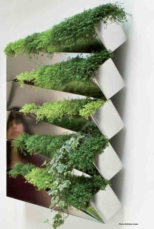 Beau Miroir En Herbe   Modern Herb Garden