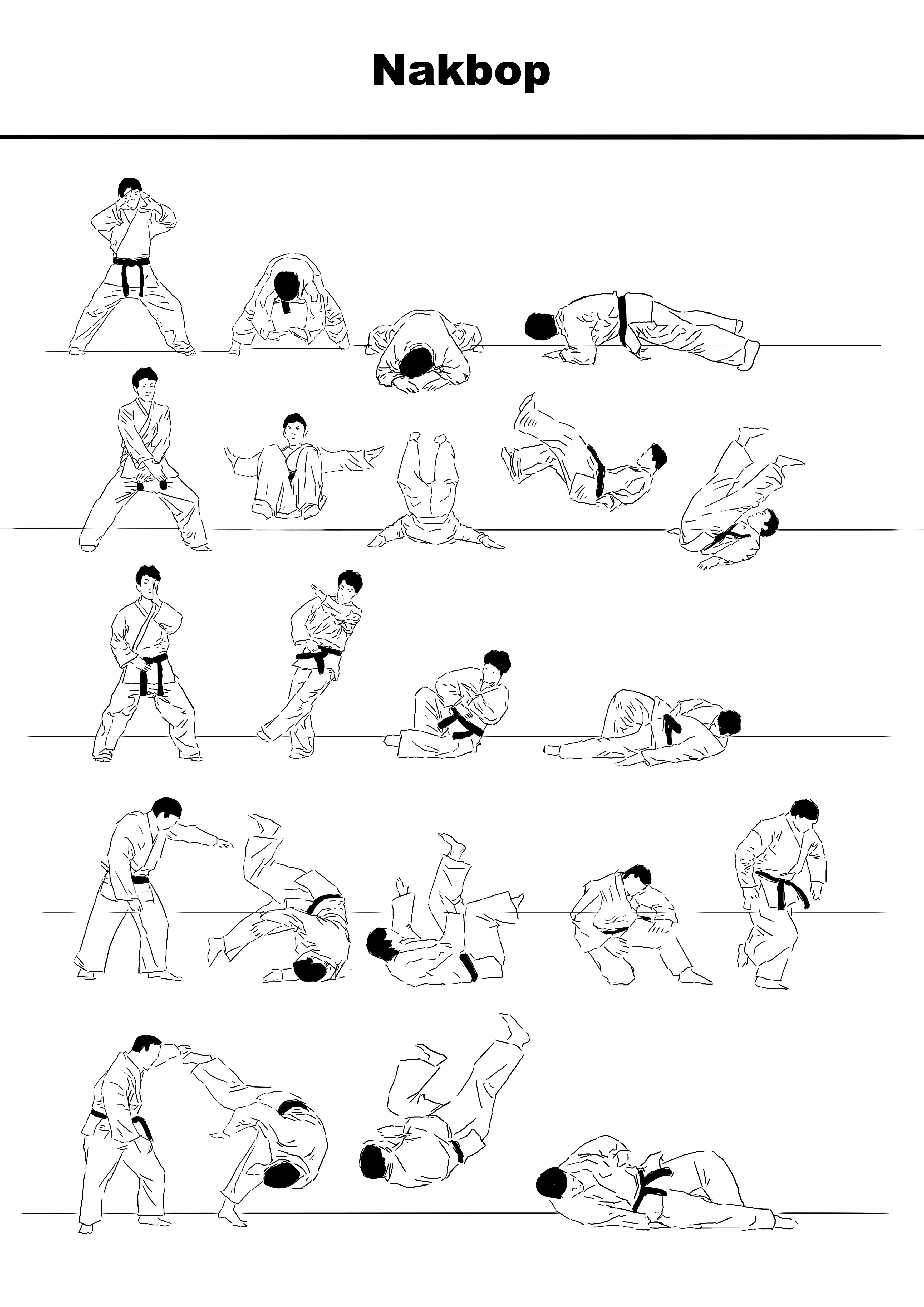 Because throws and takedowns are ubiquitous in Hapkido