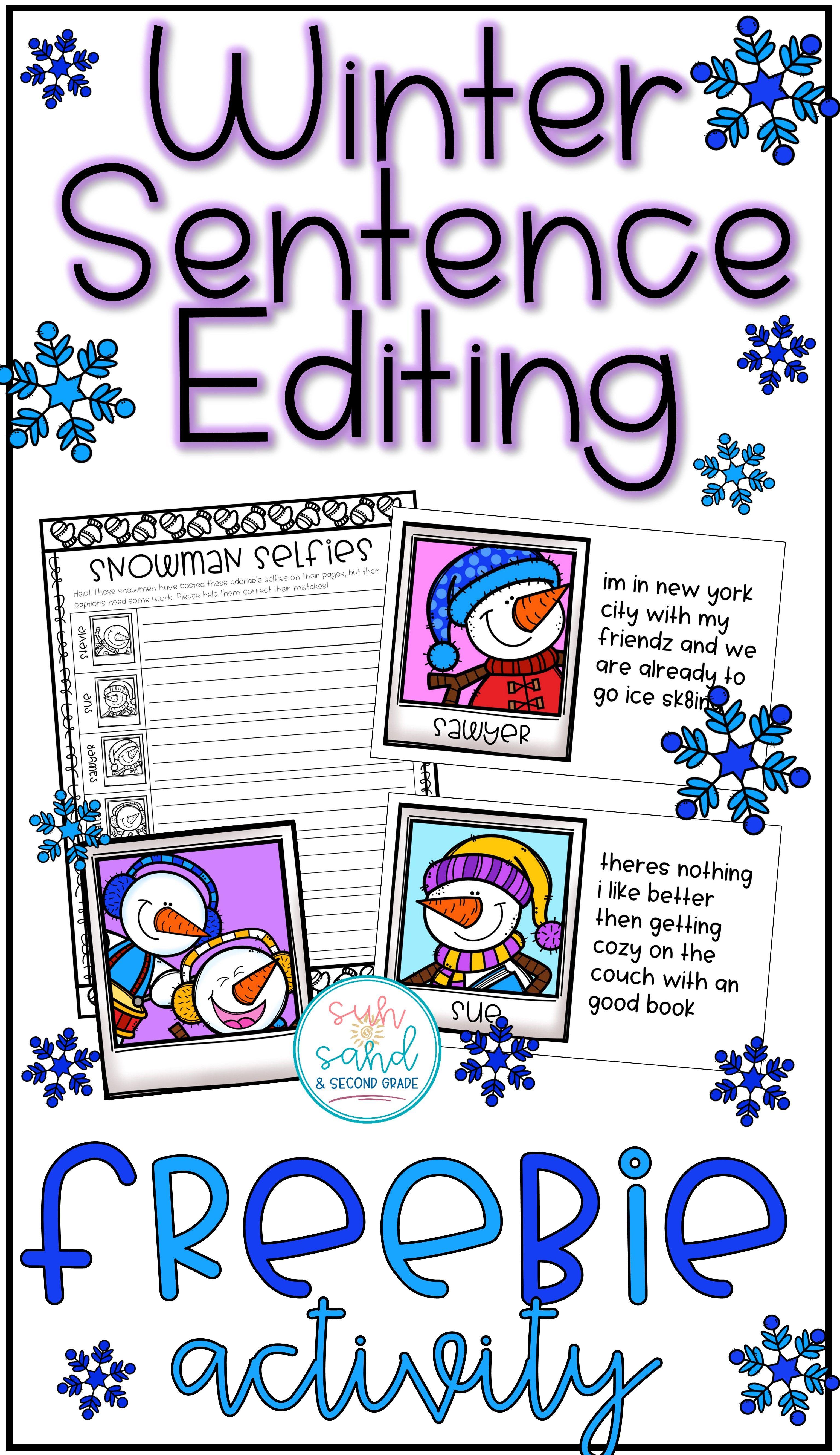 Winter Sentence Editing Activity