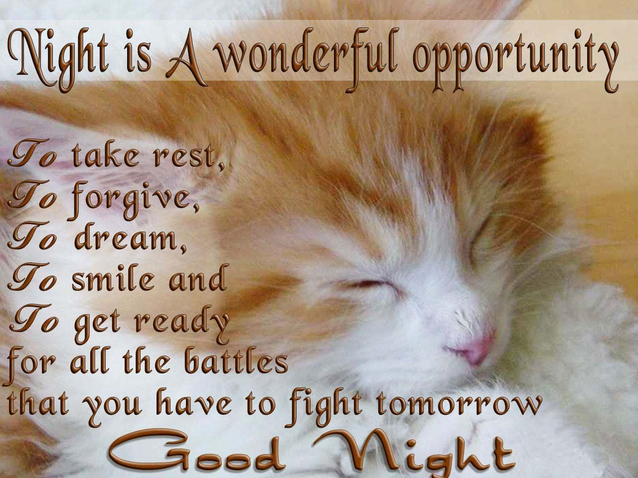 Wish Good Night To Your Friends And Loved Ones With Sweet And Short