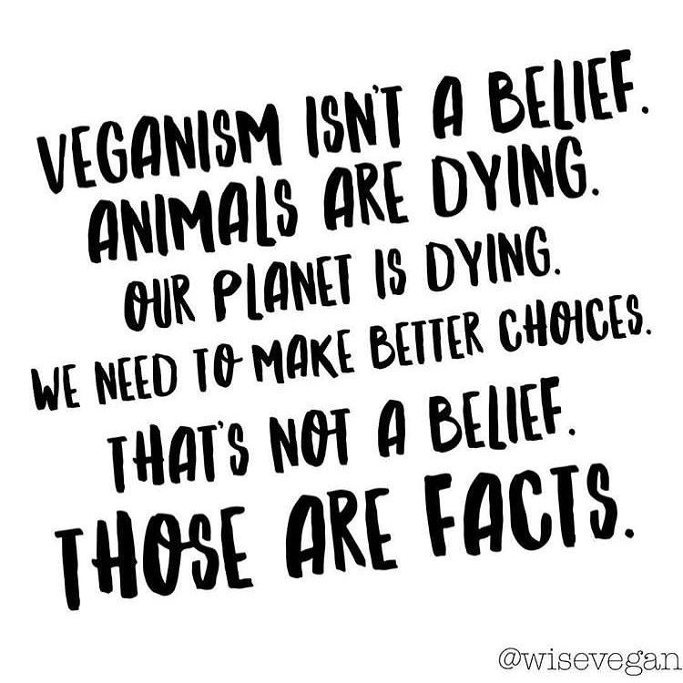 #govegan #vegan #plantbased #veganism #vegetarian #veganism #vegansofinstagram #vegan #veganlife #veganfood #crueltyfree #veganlifestyle #animalrights #animalliberation #vegansofig We aren't in survival mode anymore. We have choices