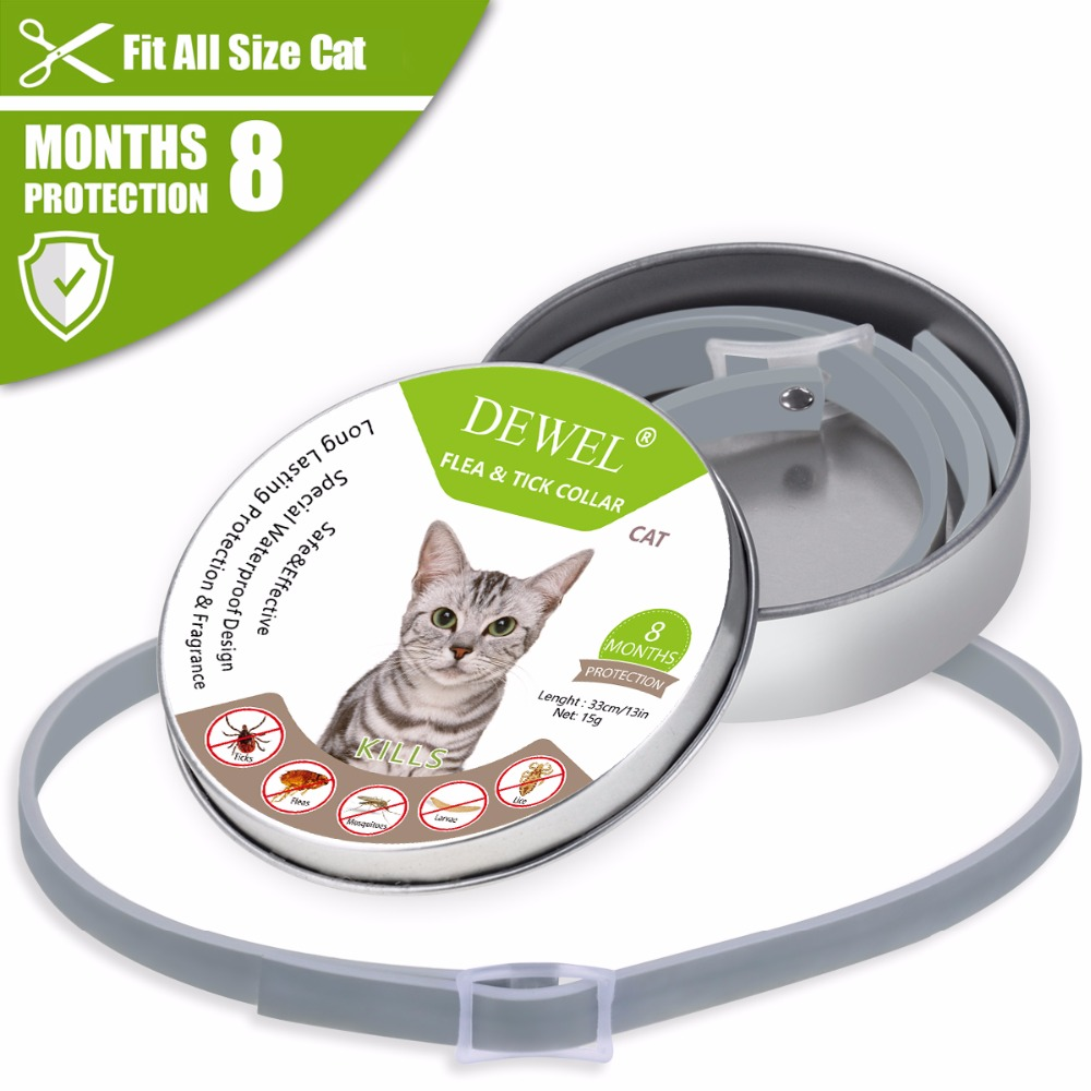 Flea And Tick Collar For Cats 8 Month Protection Pro Guard Dewel Us Stock Usps In 2020 Cat Fleas Cat Flea Collar Ticks On Dogs