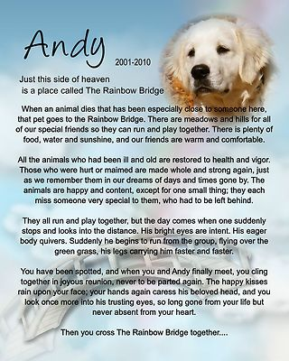 Electronics Cars Fashion Collectibles Coupons And More Ebay Personalized Pet Memorial Pet Memorials Rainbow Bridge