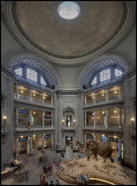 Museo Smithsonian.Smithsonian Museum Of Natural History Wishing In Washington