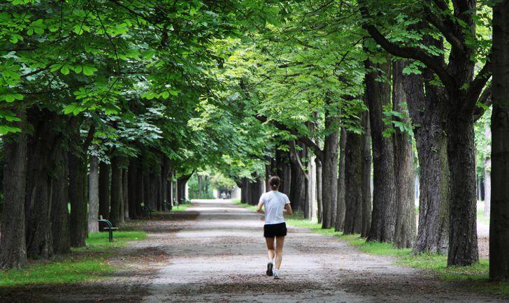 Joggen in Wien | Stadtbekannt Wien | Das Wiener Online Magazin