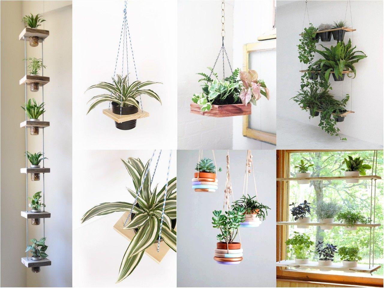 Decorar con plantas en estantes colgantes interior - Estantes para plantas ...