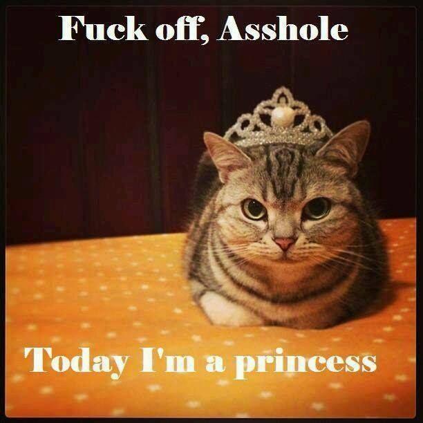 today I'm a princess