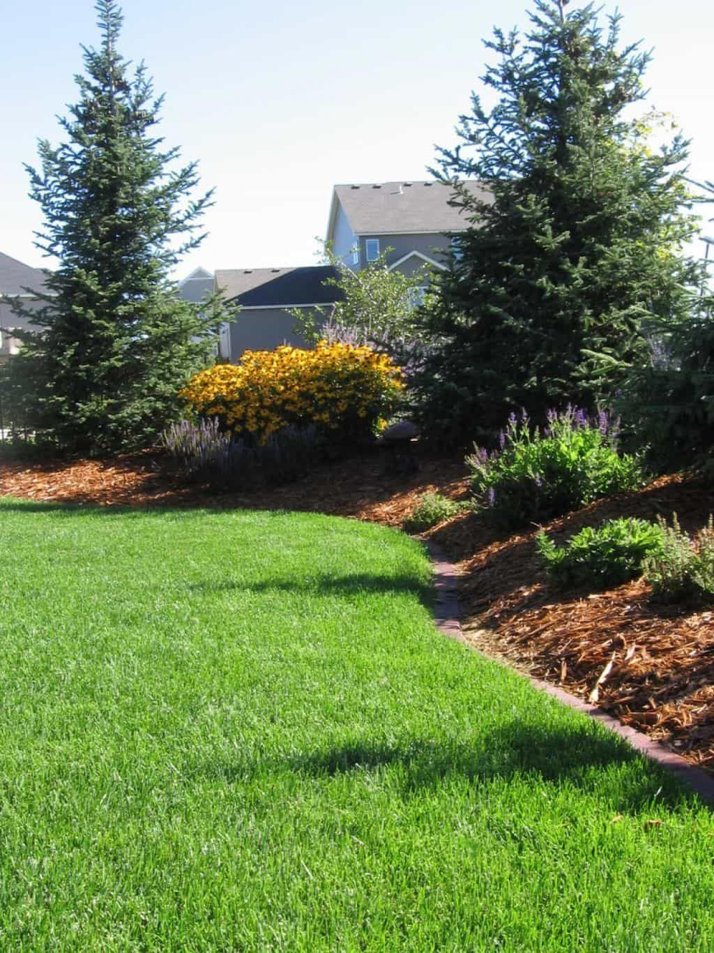 Outdoor Landscaping With Berms