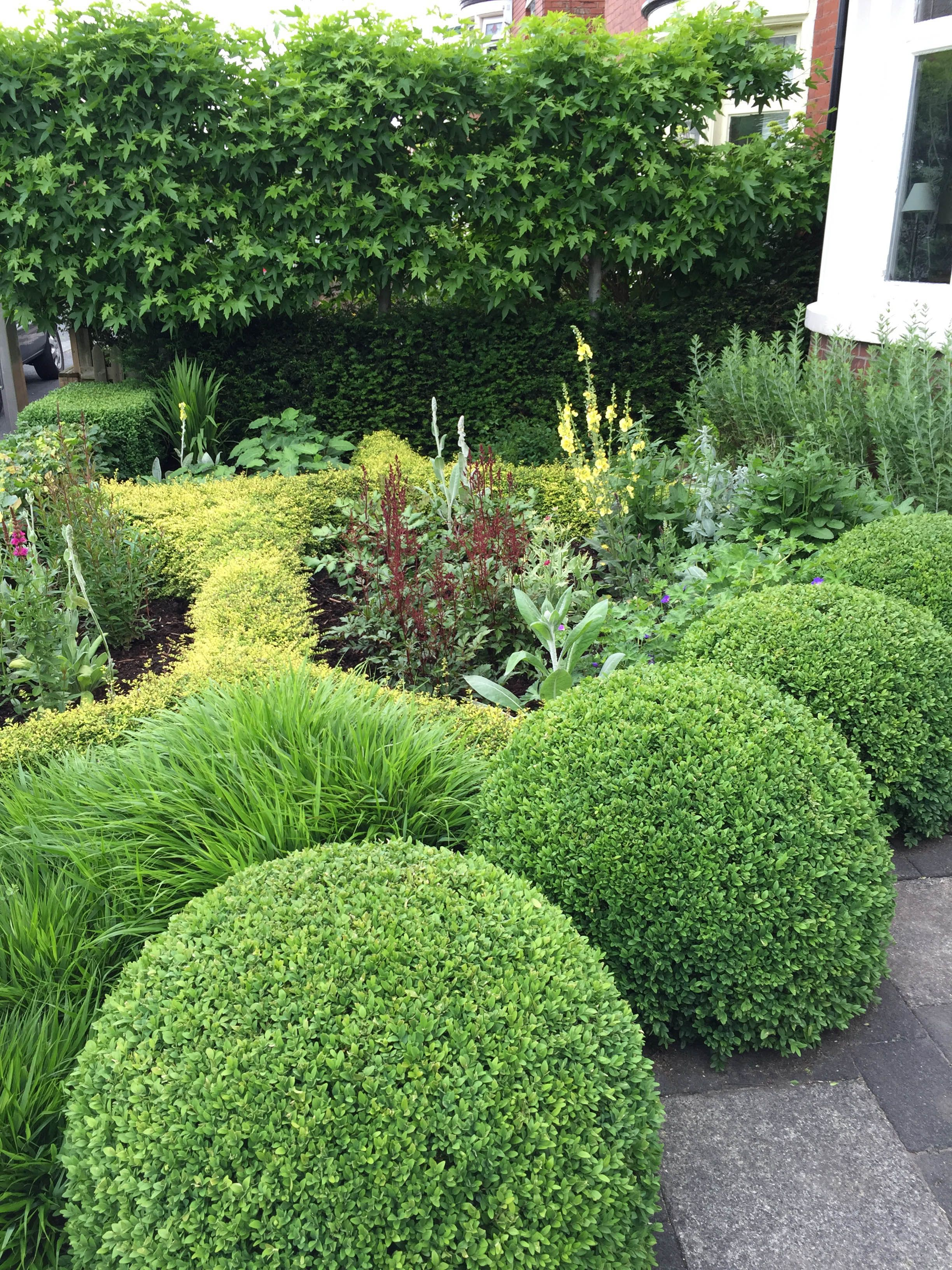 Pin de Marlene De lange en Tuin | Pinterest | Jardín