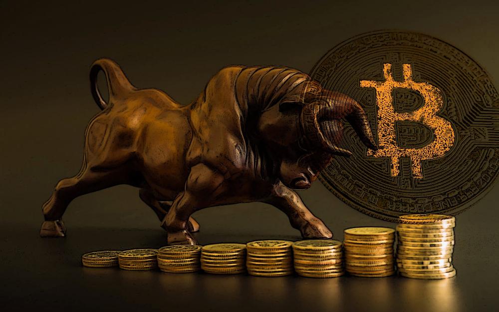 bitcoin okos kereskedő bitcoin