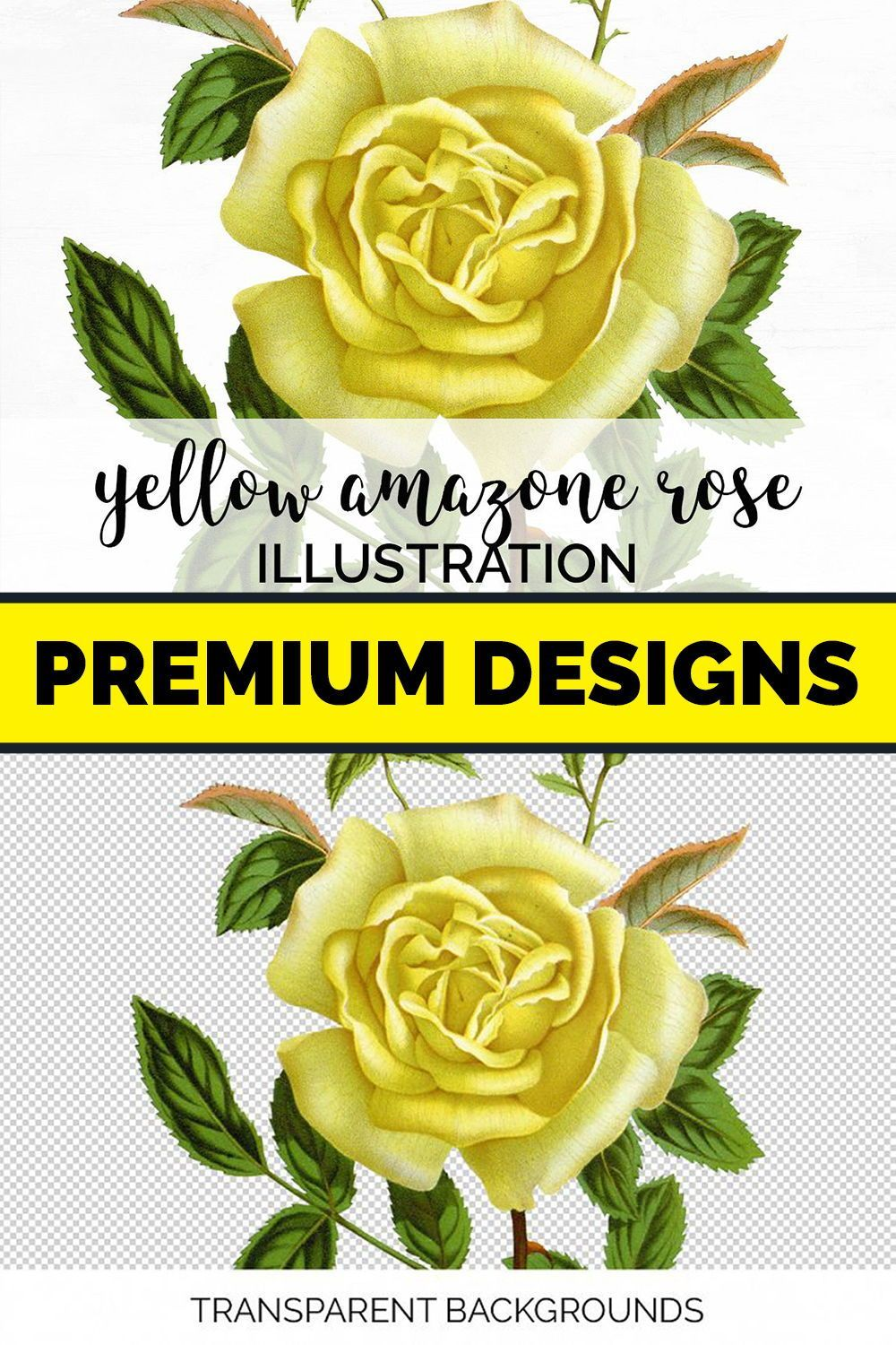 Floral print carnations in yellow carnations illustration printable home decor or wall art