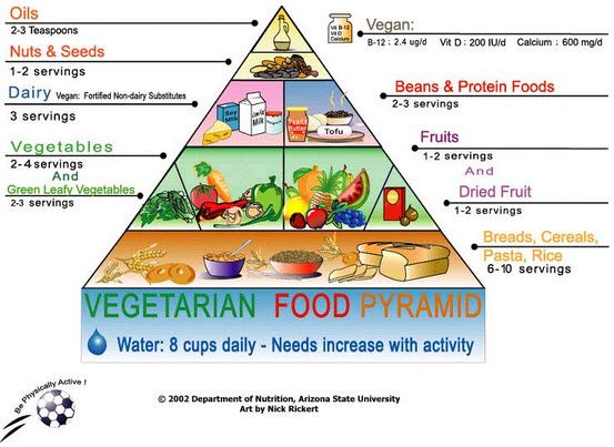 Top 5 vegetarian diets to lose weight veggie diet plan for fitness