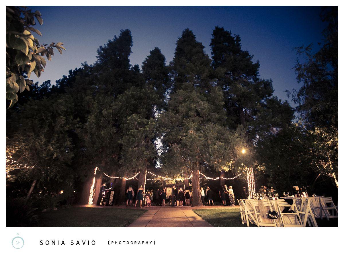 Sonia Savio Photography: Emily & James's Wedding, Monte Verde Inn, Forresthill, CA