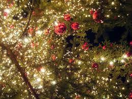 feliz natal tumblr - Pesquisa Google