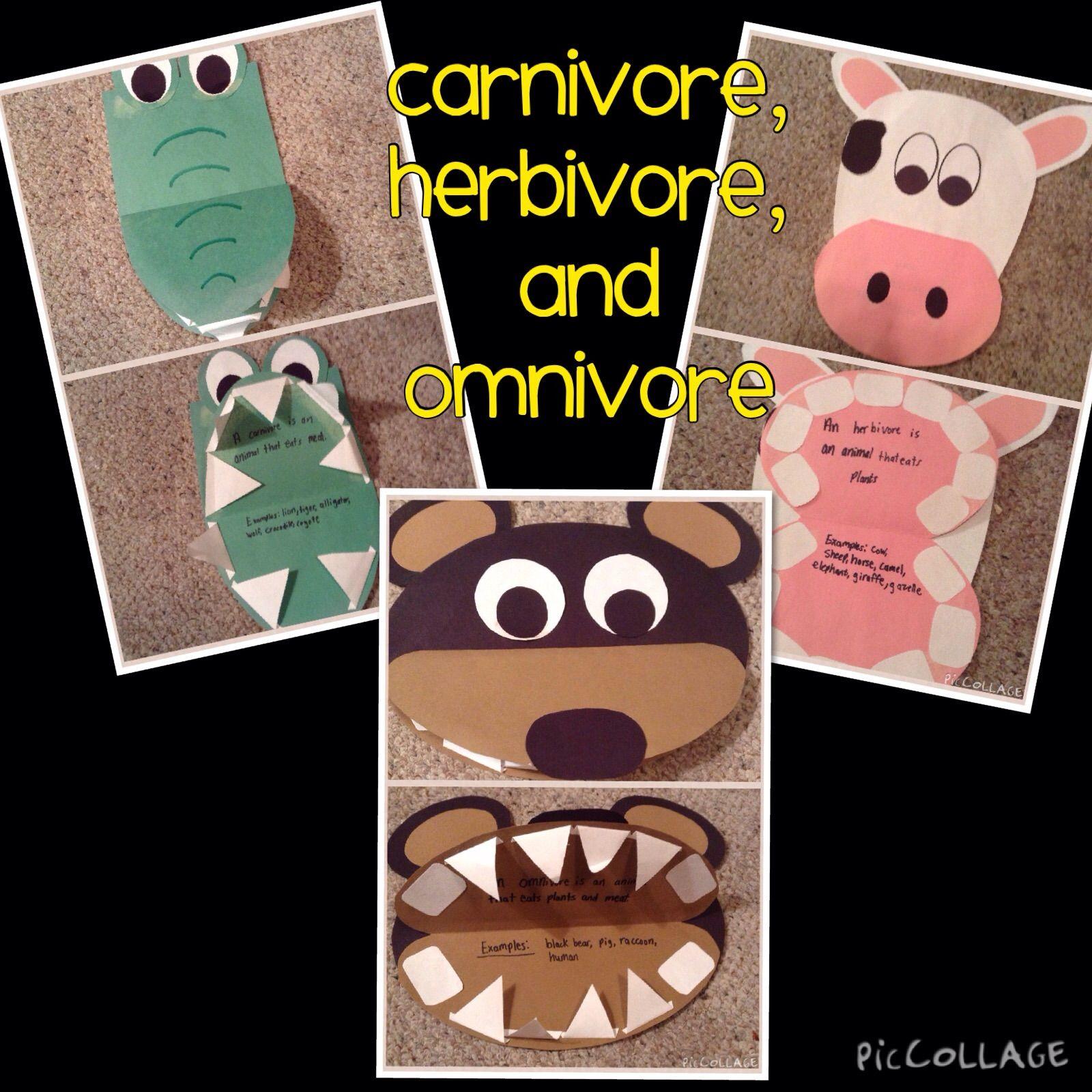 Carnivore Herbivore Omnivore Craftivities And Activities Tpt