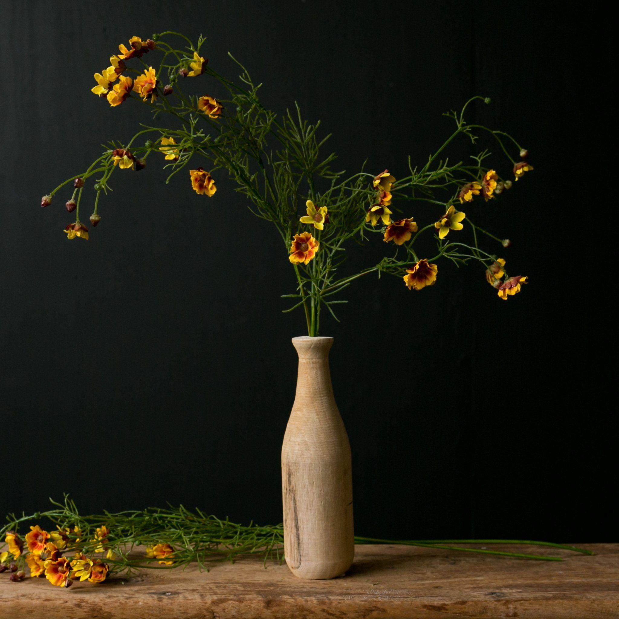 Cosmos Stem Cosmos Flowers Flower Vases Bud Vases