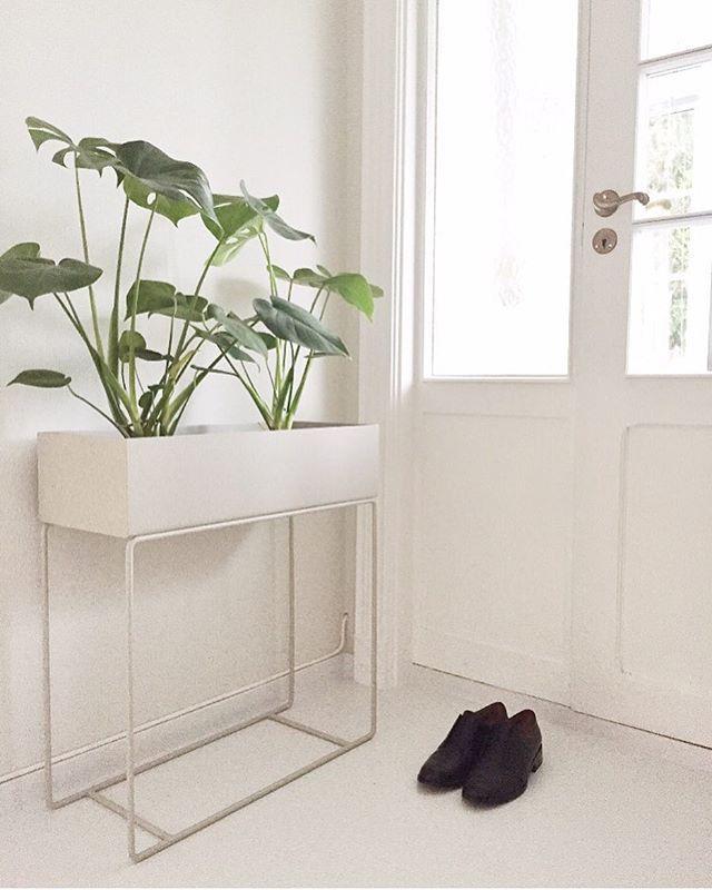 Plantbox 🌿🌿🌿 Så riktig! Så fin ✨✨ Vi har den på lager for omgående levering 🌿 Finnes i flere forskjellige farger for å matche nettopp ditt hjem 💛 #mittnordiskehjem #plantbox #fermliving #pålager #greenliving #interior #nettbutikk