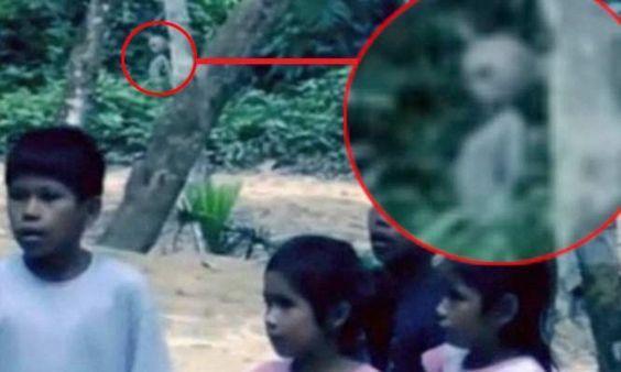 52 Mysterious Photos That Baffled the Public.The Amazon alien.