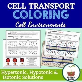 Cell Transport Coloring- Hypertonic Hypotonic Isotonic - new tabla periodica tierras raras