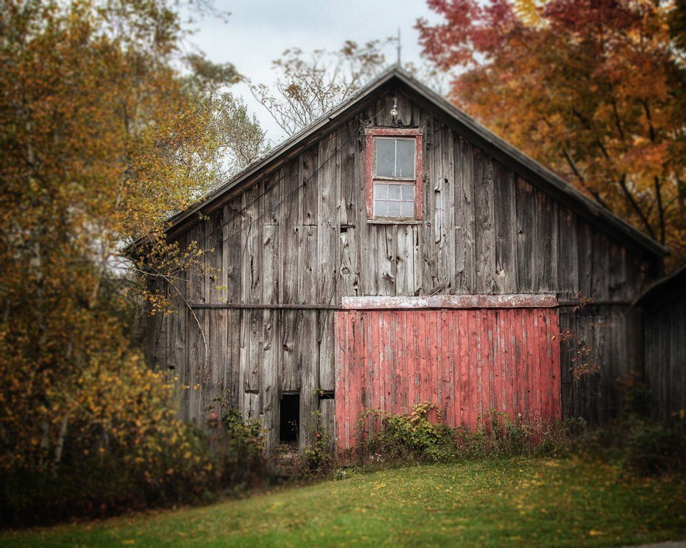 Rustic Wall Decor - The Barn with the Red Door - Country Barn Landscape Art Photo - Autumn Home Decor Print in Grey and Red.