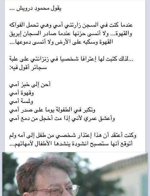 احن الي خبز امي وقهوة امي Leader Quotes Cool Words Arabic Quotes
