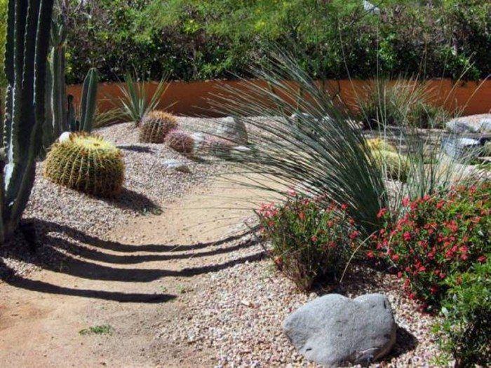 Simple Desert Landscaping Ideas Desert Landscaping For Your Yard