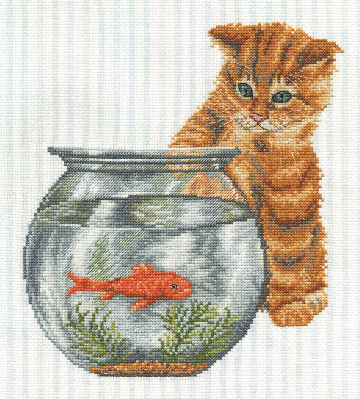 Cat And Goldfish Cats Bk669 21 99 Buy Now Cats Chorus