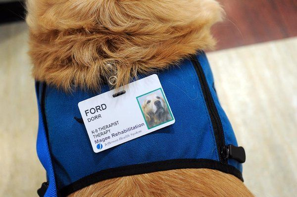 Ford's official name badge