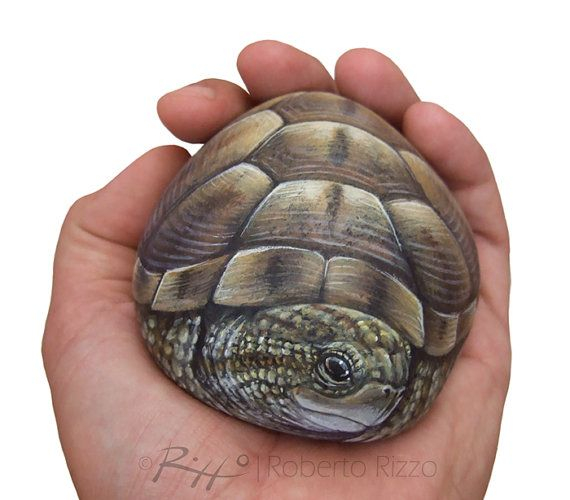 Unique Hand Painted Tortoise A Wonderful Earth by RobertoRizzoArt