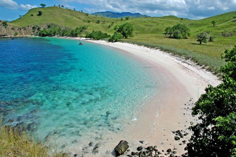 Pink Beach in Komodo National Park Nusa Tenggara - Indonesia