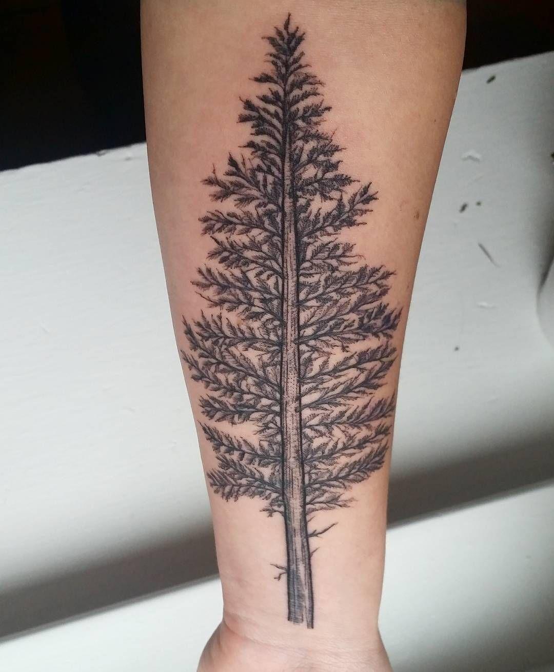 (1080×1311) Pine tree tattoo