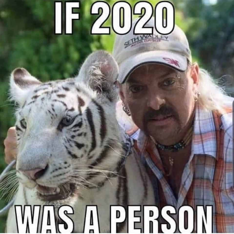 A Collection Of The Very Best Netflix S Tiger King Memes In 2020 King Meme Funny Tiger Funny Animal Memes