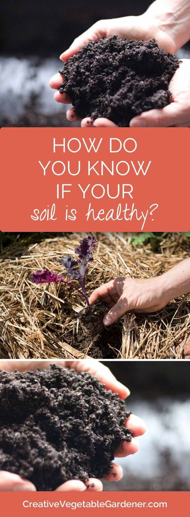 How do you know if you have healthy soil garden soil