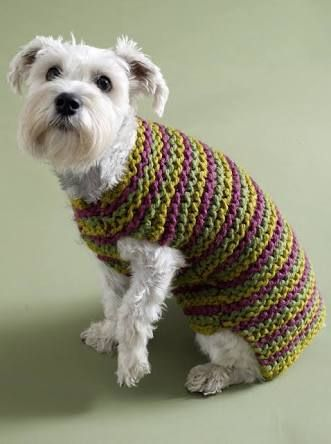 Dog Sweaters Knitting Patterns Ile Ilgili Görsel Sonucu Dog