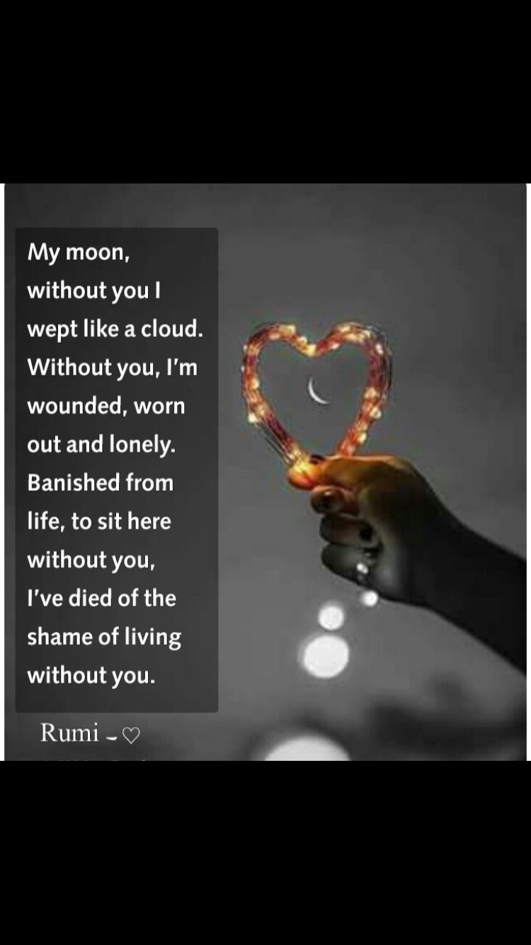 Jalaluddin Rumi Quotes Pin by sushmita...