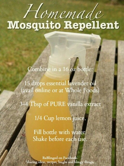 Homemade insect repellent | DIY | Mosquito spray, Homemade ...