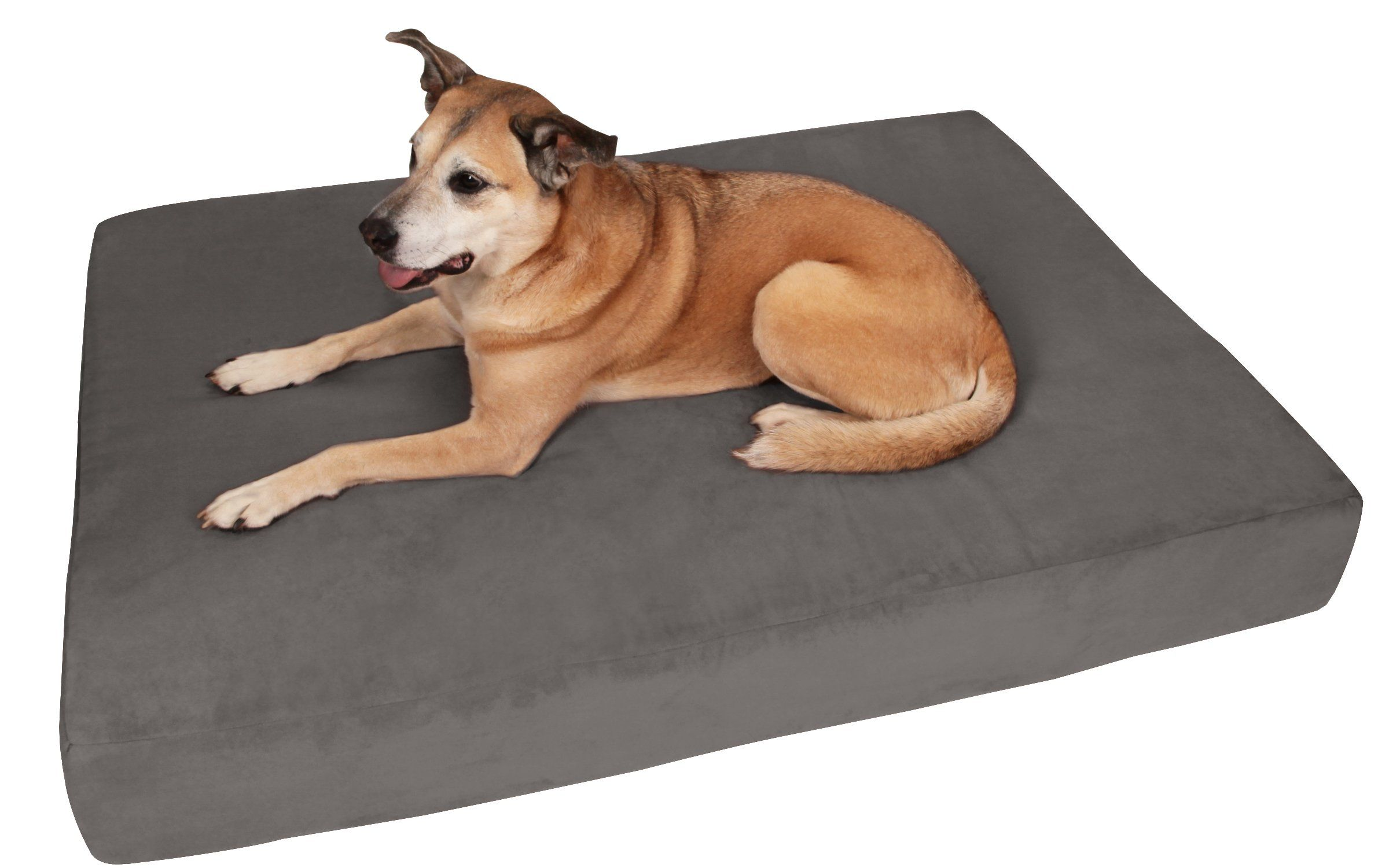 Big Barker 7 Pillow Top Orthopedic Dog Bed Large Size 48 X